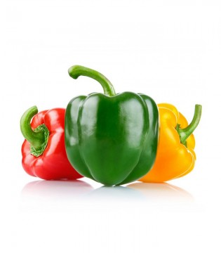 Capsicum - Mix Color
